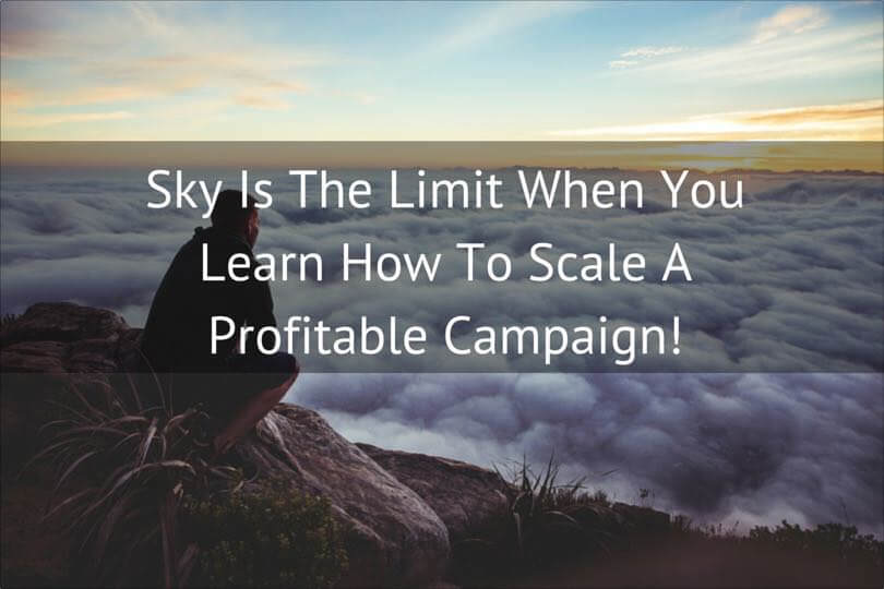 Scaling A Profitable Campaign copy